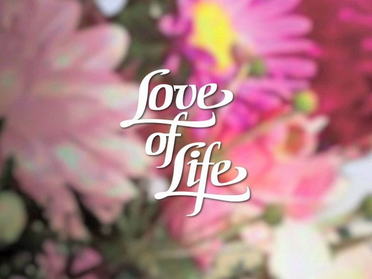 Read more about the article Love of Life – Christopher Reeve Introductory Letter Thomas de Villiers